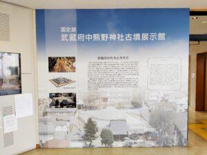 武蔵府中熊野神社古墳展示館